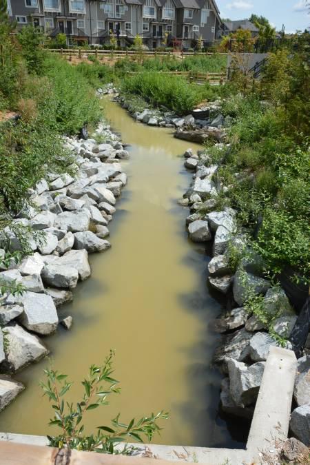 Sediment in Byrne Creek in Burnaby, BC