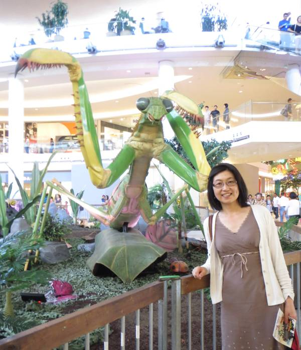 Giant Bugs at Aberdeen Centre