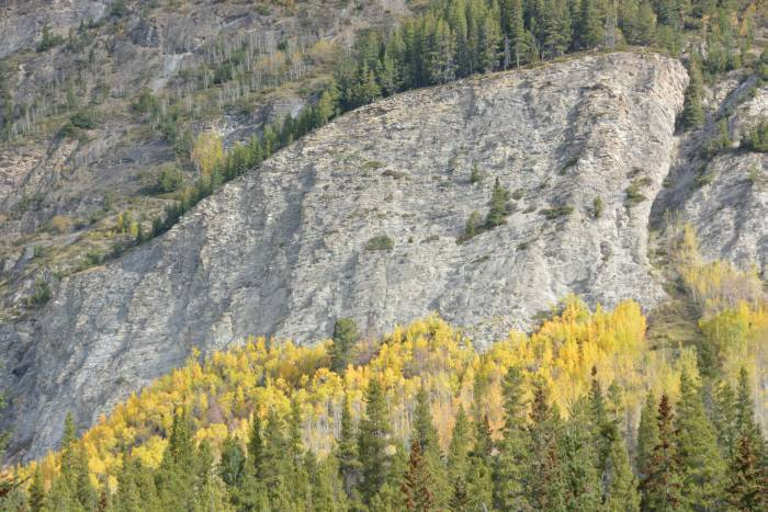 icefields_parkway_5_20141003