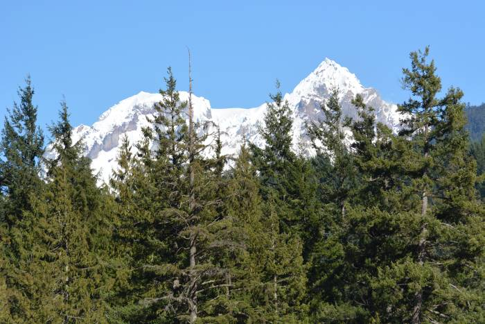 Alice Lake Provincial Park mountain view