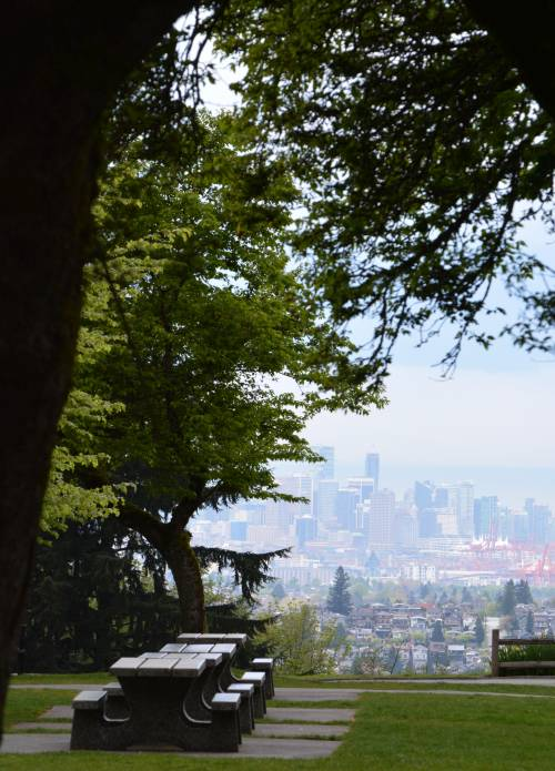 Burnaby Mountain trails