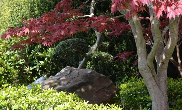 Nikkei Place Burnaby Spring Festival