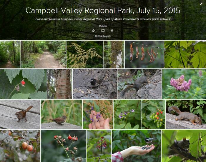 Campbell Valley Park Flickr Album