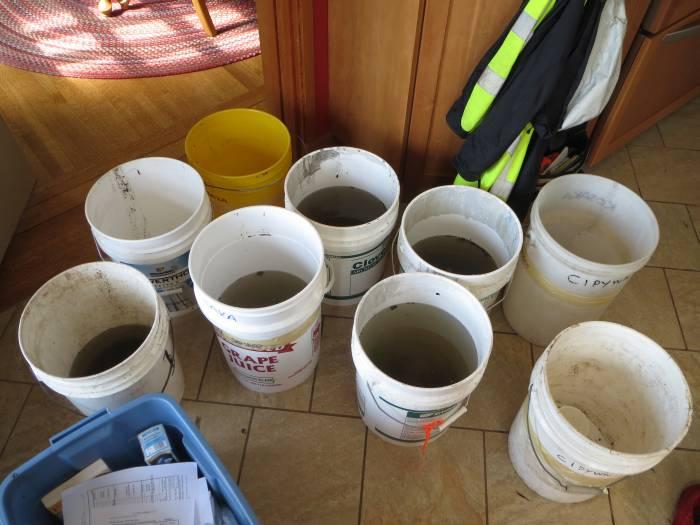 sample pails