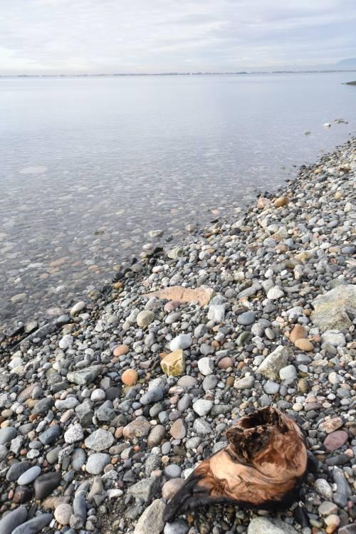 Crescent Beach BC