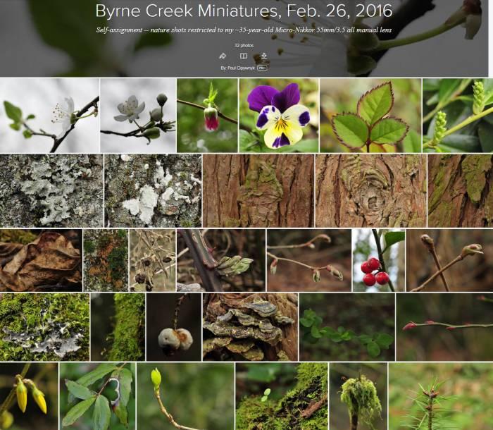 cipywnyk_byrne_creek_miniatures_flickr_20160226