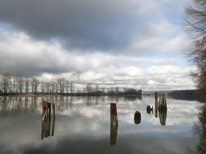 Burnaby Fraser Foreshore clouds