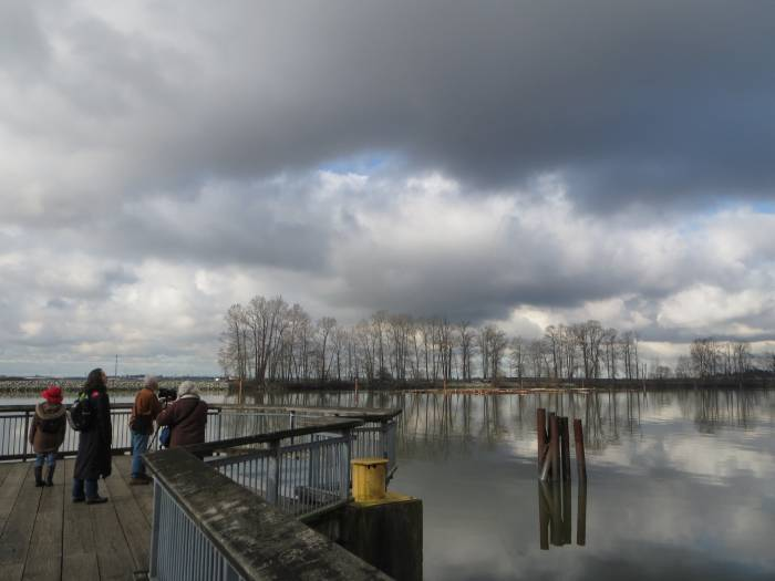 Burnaby Fraser Foreshore Park viewpoint
