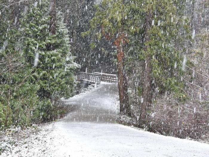 cipywnyk_burnaby_snow_byrne_creek_footbridge_20161204