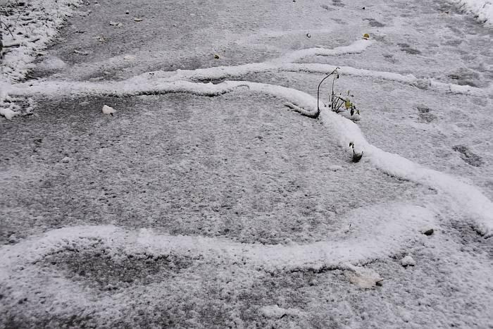 cipywnyk_burnaby_snow_byrne_creek_snow_10_20161204