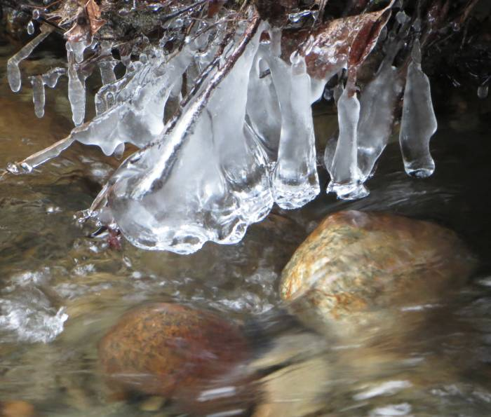 cipywnyk_byrne_creek_ice_13_20161217