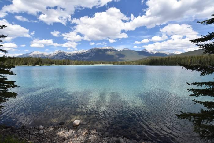 Nature scenes Jasper area