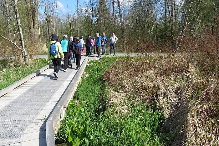 Deer Lake Park flora fauna