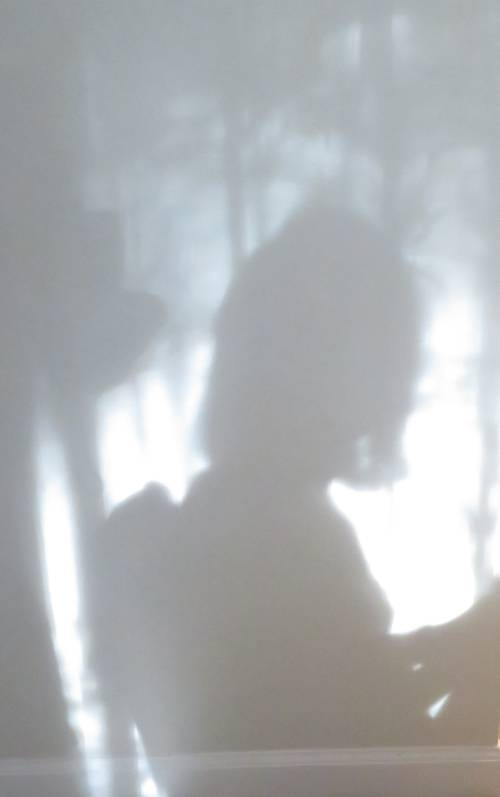 breakfast shadows