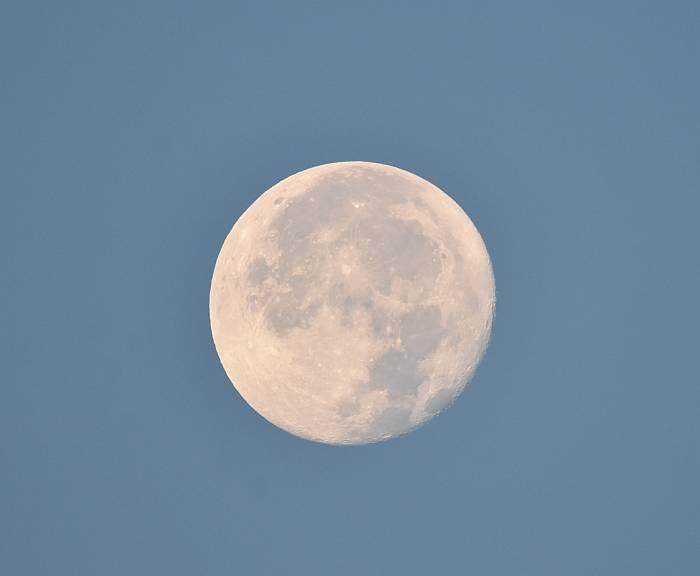 harvest moon burnaby morning