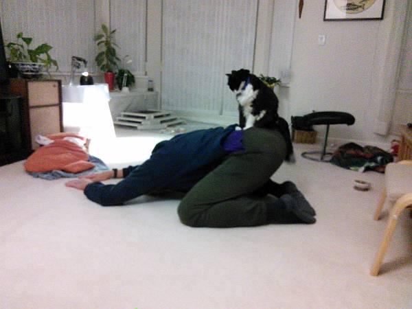 Paul Cat stretching