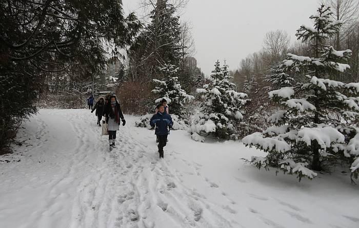 snowy byrne creek tour kids