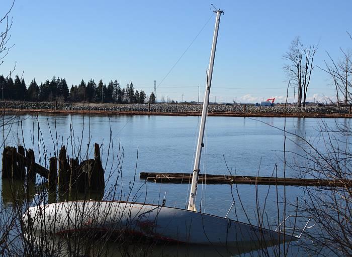 derelict sailboat fraser foreshore park