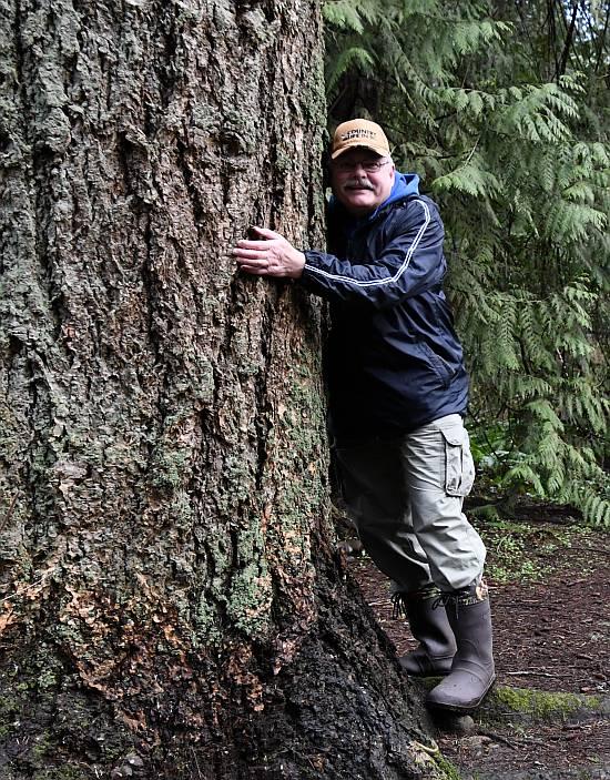hugging trees byrne creek burnaby