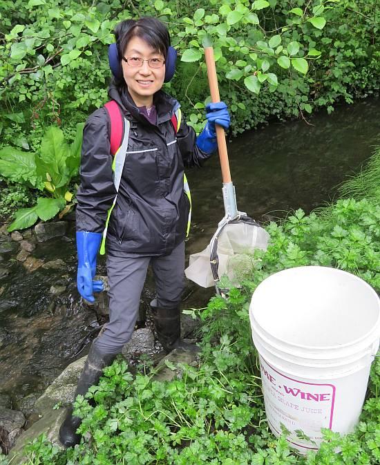byrne creek streamkeepers bug count burnaby bc