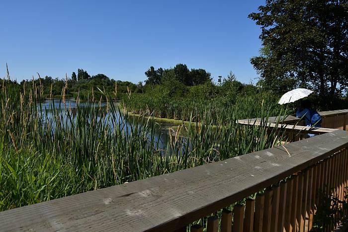 terra nova park richmond bc